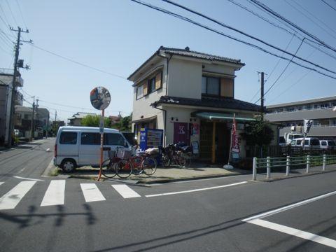 五葵02.jpg